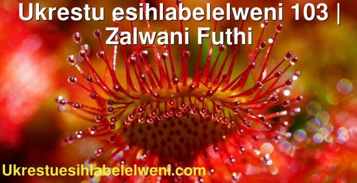Ukrestu esihlabelelweni 103 | Zalwani Futhi