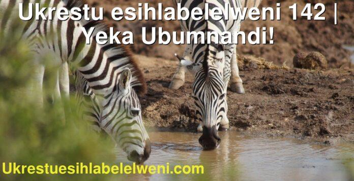 Ukrestu esihlabelelweni 142 | Yeka Ubumnandi!