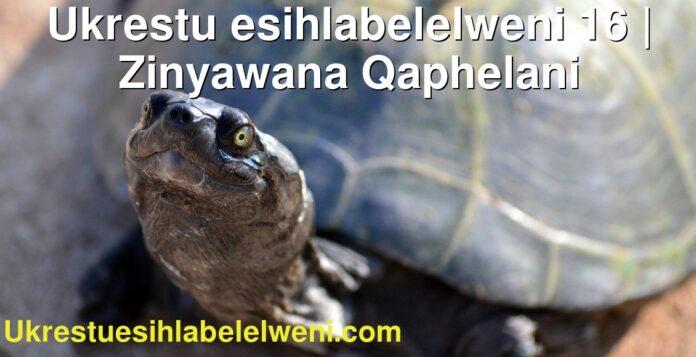 Ukrestu esihlabelelweni 16 | Zinyawana Qaphelani