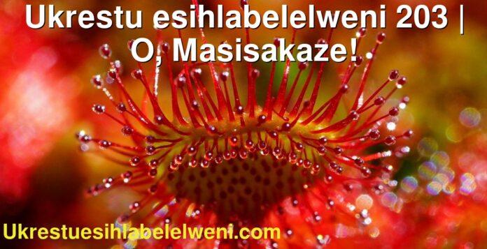 Ukrestu esihlabelelweni 203   O, Masisakaze!