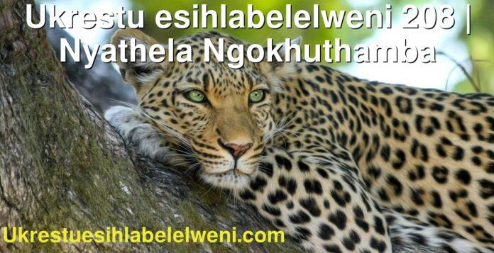 Ukrestu esihlabelelweni 208 | Nyathela Ngokhuthamba