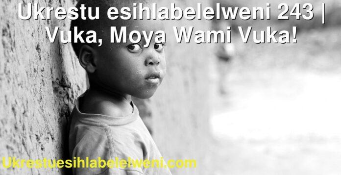 Ukrestu esihlabelelweni 243 | Vuka, Moya Wami Vuka!