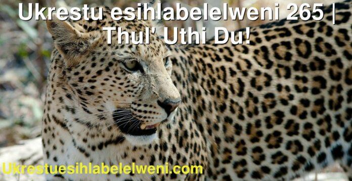 Ukrestu esihlabelelweni 265 | Thul' Uthi Du!