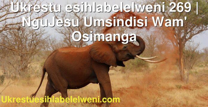 Ukrestu esihlabelelweni 269 | NguJesu Umsindisi Wam' Osimanga