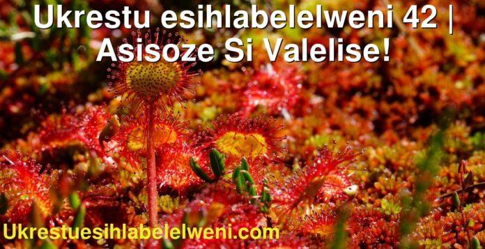 Ukrestu esihlabelelweni 42   Asisoze Si Valelise!