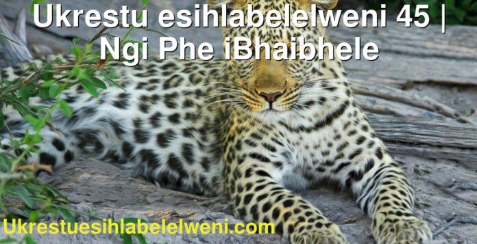 Ukrestu esihlabelelweni 45 | Ngi Phe iBhaibhele
