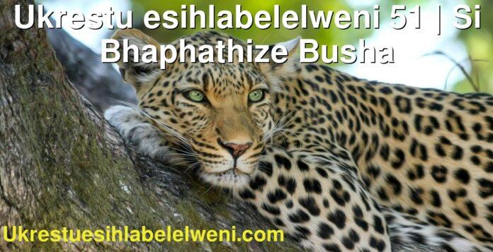 Ukrestu esihlabelelweni 51   Si Bhaphathize Busha