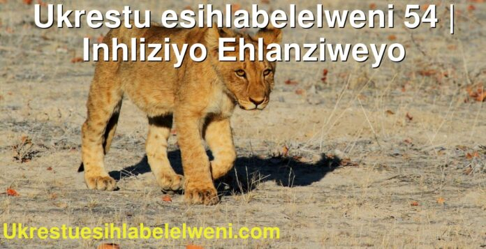 Ukrestu esihlabelelweni 54   Inhliziyo Ehlanziweyo