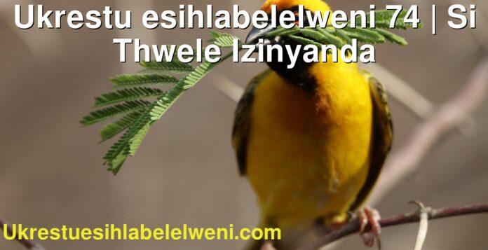 Ukrestu esihlabelelweni 74 | Si Thwele Izinyanda