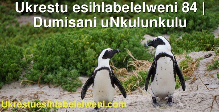 Ukrestu esihlabelelweni 84 | Dumisani uNkulunkulu