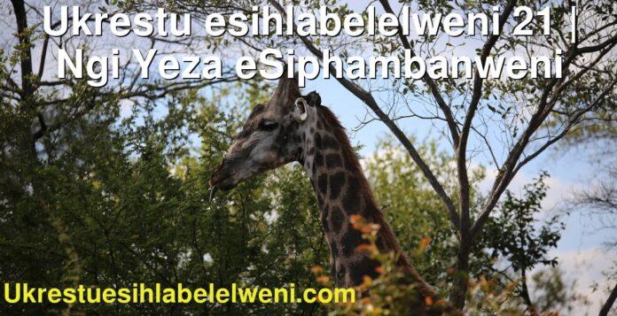 Ukrestu esihlabelelweni 21   Ngi Yeza eSiphambanweni