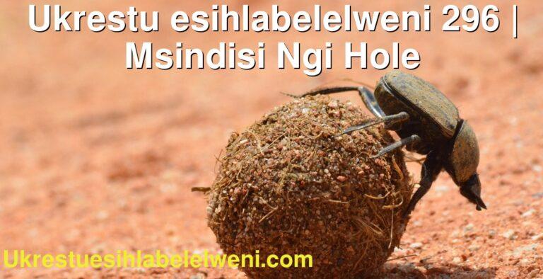Ukrestu esihlabelelweni 296   Msindisi Ngi Hole