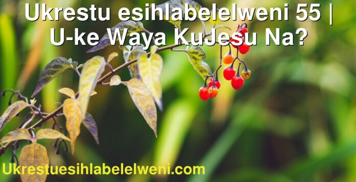 Ukrestu esihlabelelweni 55   U-ke Waya KuJesu Na?